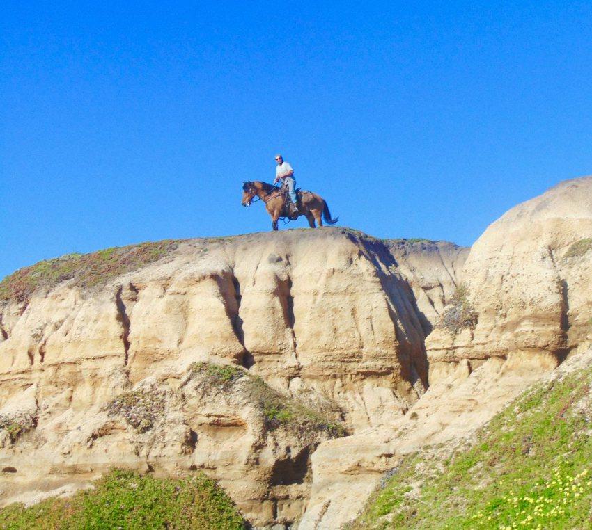 horse on clffs