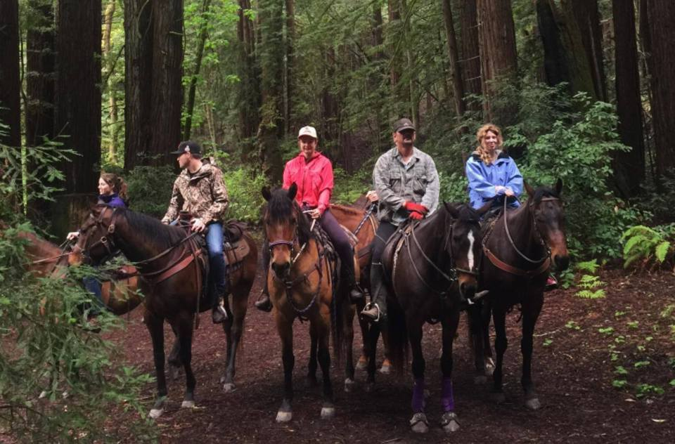 Riding in the Redwoods
